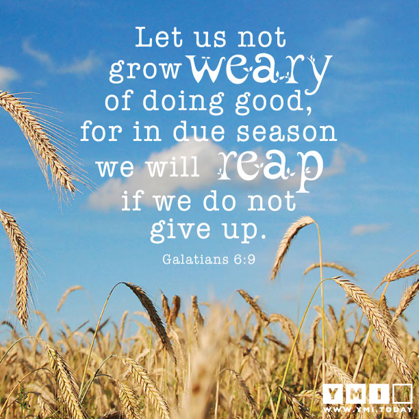 YMI Typography - Let us not grow weary of doing good, for in due season we will reap if we do not give up. - Galatians 6:9