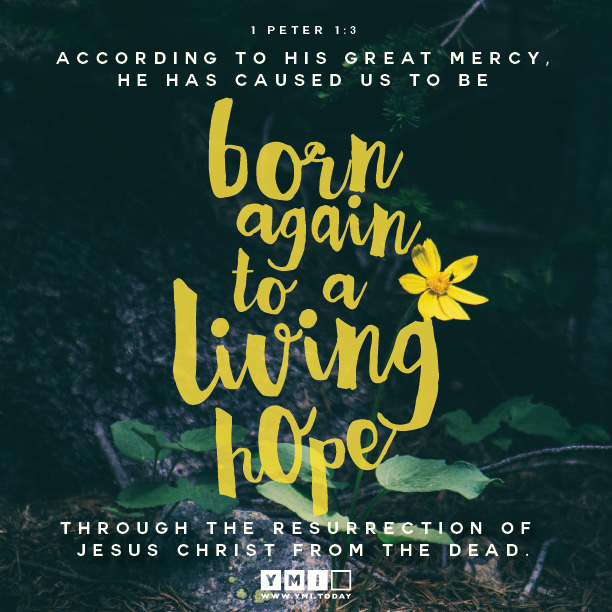 YMI Typography - According to His great mercy, He has caused us to be born again to a living hope through the resurrection of Jesus Christ from the dead. - 1 Peter 1:3