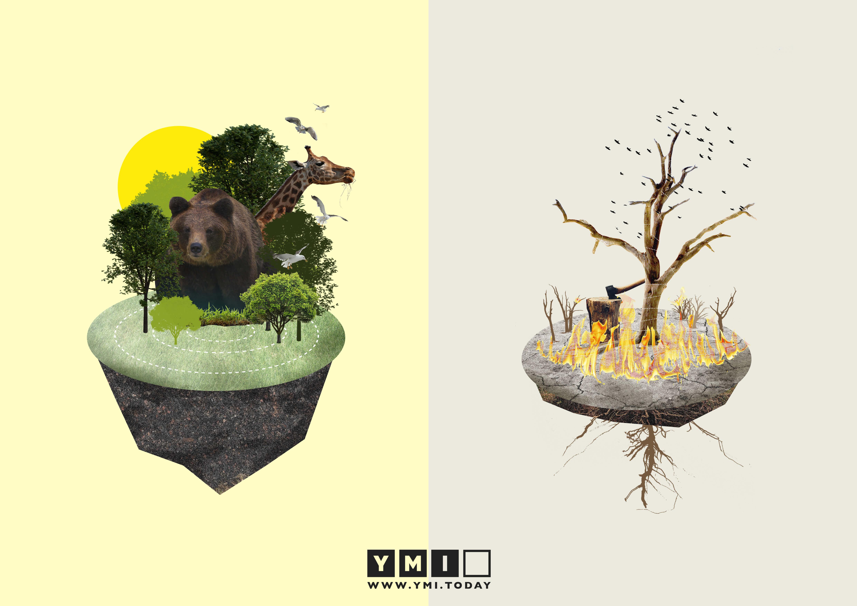Creation-and-Ruin