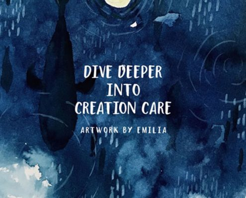 Image of whales dive deeper into creation care