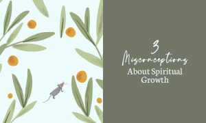 3 Misconceptions About Spiritual Growth