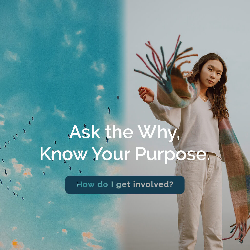 Ask the Why, Know Your Purpose