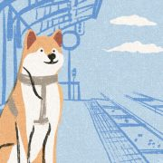 image of a shiba inu dog waiting patiently in a station