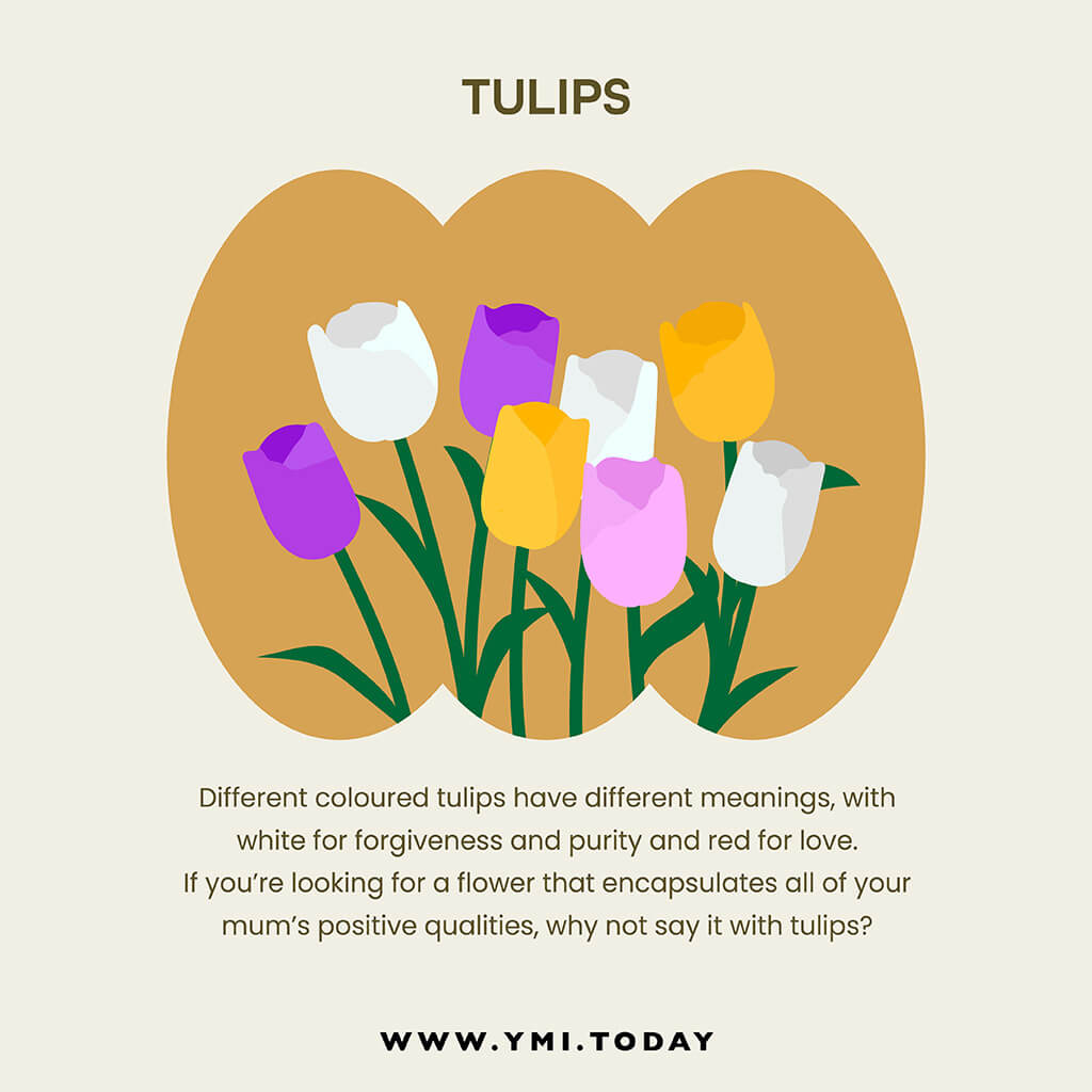 graphic image of tulips