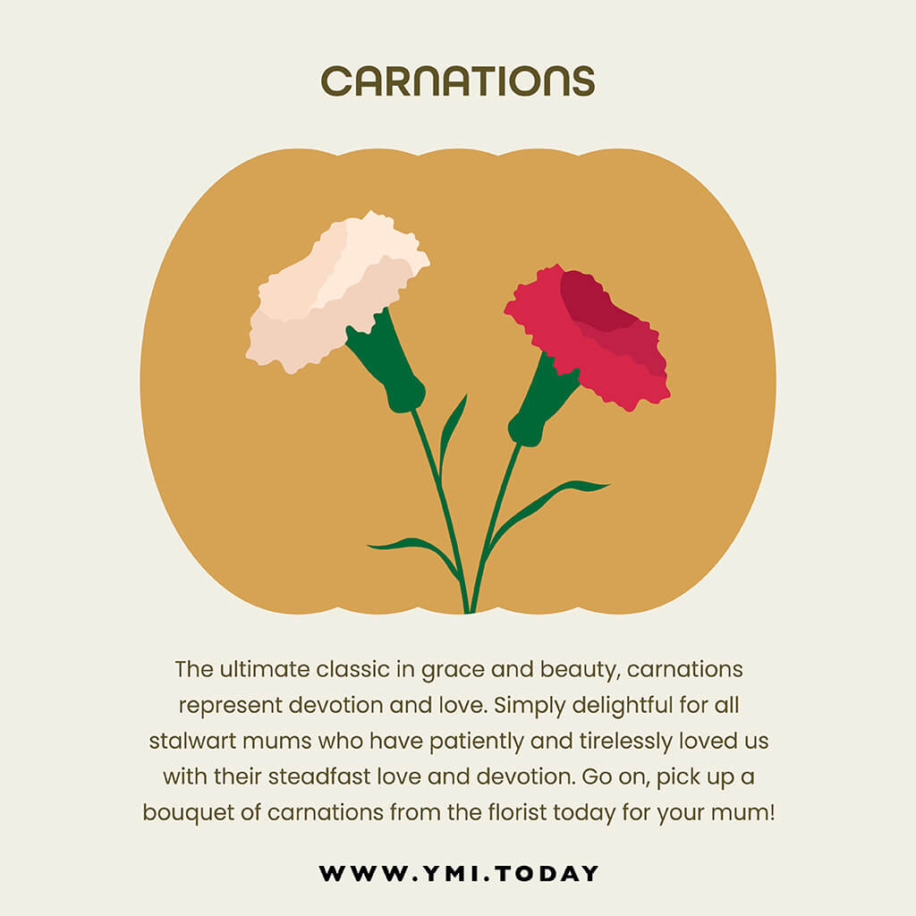 graphic image of carnations