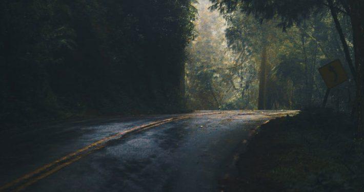 a dark road in jungle